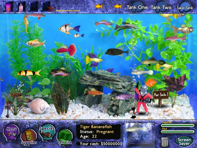 Fish tycoon free online games for Fish tank game